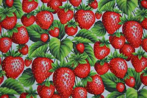 Fruit fabric