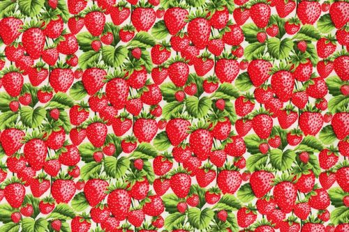 Fabri Quilt 112-28661 Strawberries