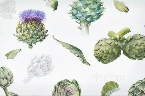 Stain Resistant Tablecloth  artichoke