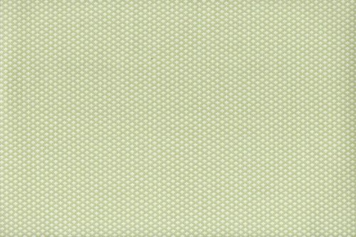 Windham Fabrics Evelyn 41988-2