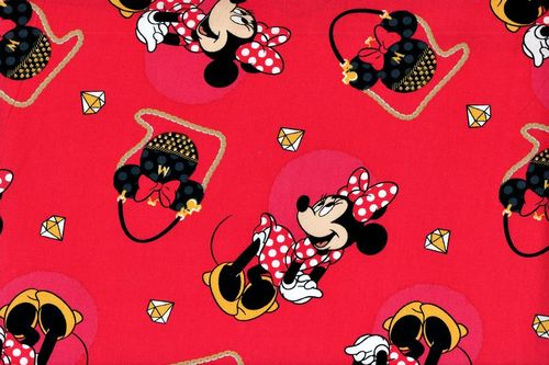 Minnie purses