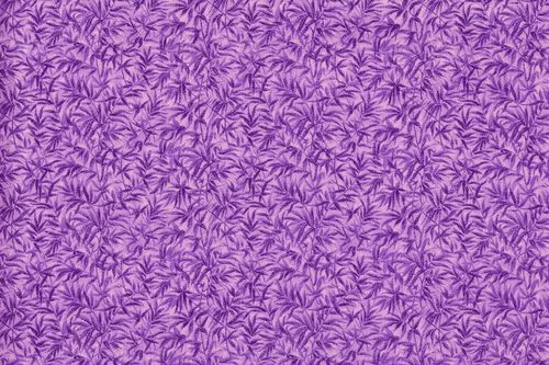 Bamboo purple